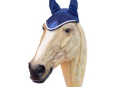 bonnet horse