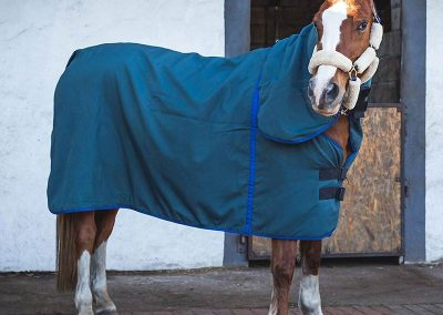 horse duvet